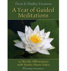 A Year of Guided Meditations DVD Cover