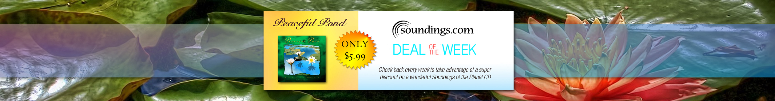Deal-of-the-Week-Peaceful-Pond-Full-Slider